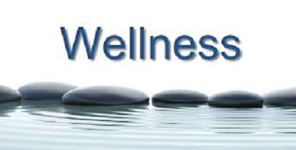 Wellness Pic2